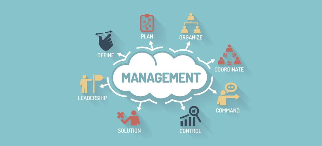 Đề xuất tổ chức bộ máy quản lý